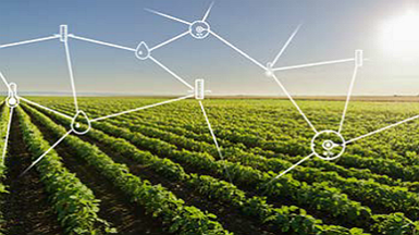 Arm Mbed Cloud Remote Software Update for Smart Agriculture