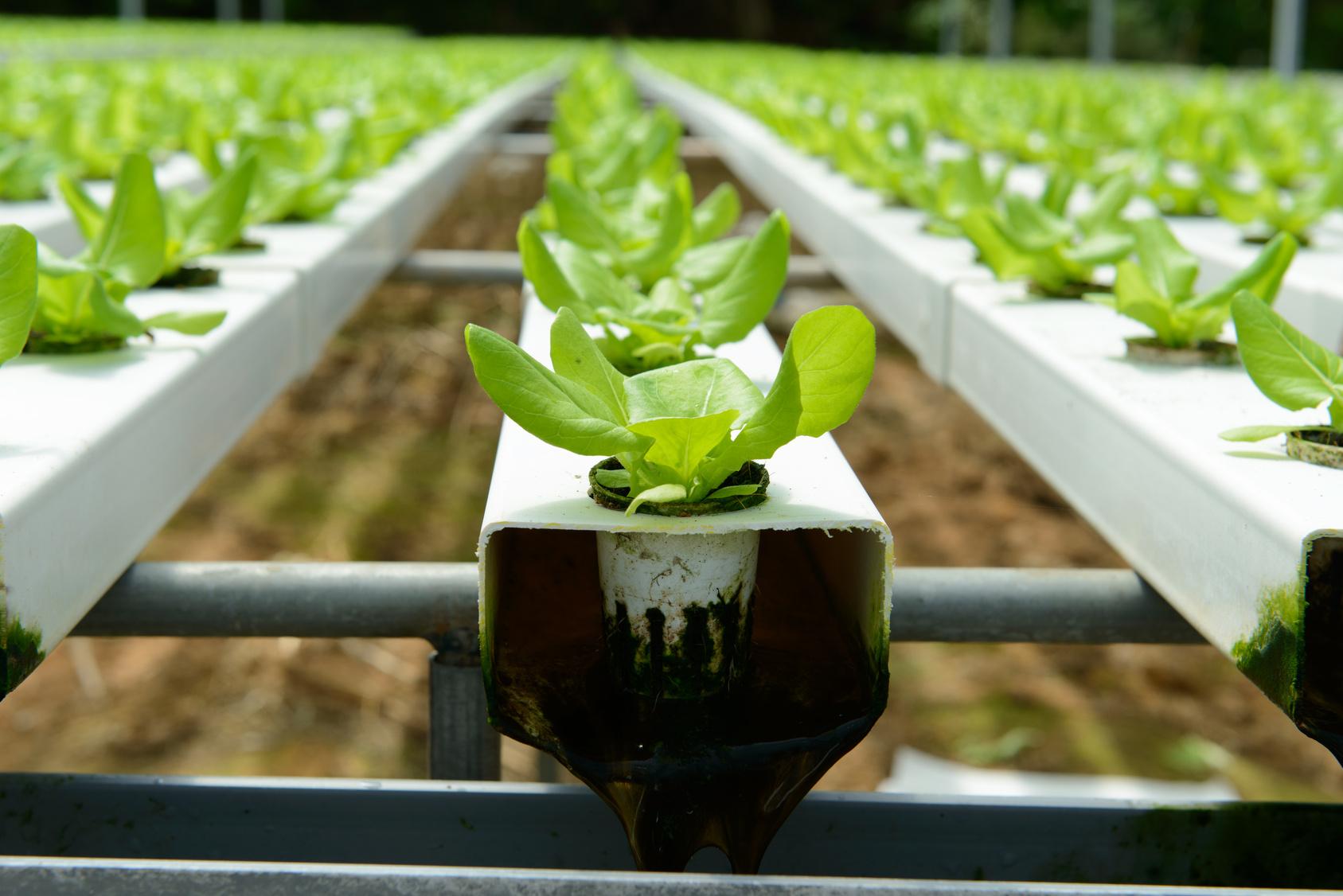 Advantech LoRa Private Solution for Smart Irrigation System - Advantech
